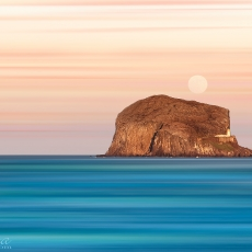 Bass Rock Views